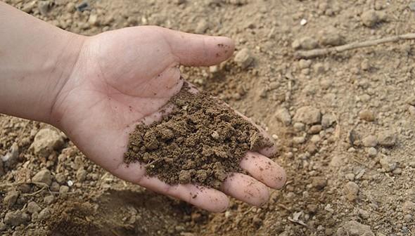 Đặc điểm đất yếu
