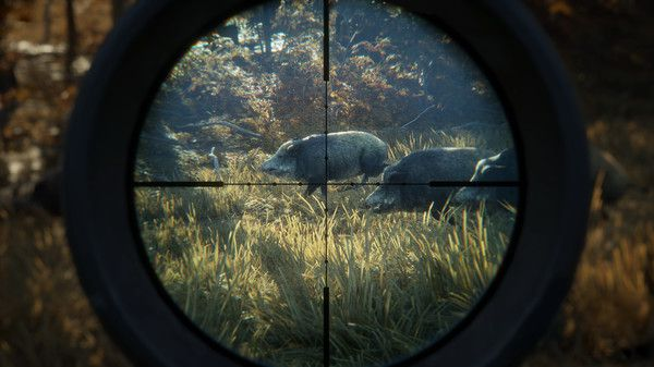 TheHunter Call Of The Wild ATV