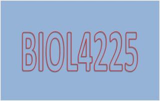 Kunci Jawaban Soal Latihan Mandiri Taksonomi Tumbuhan Rendah BIOL4225