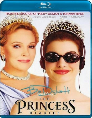 The Princess Diaries (2001) Dual Audio Hindi 480p BluRay 300MB