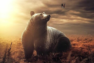 dreams about bear meaning