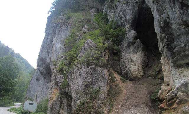 apuseni muntii bihorului