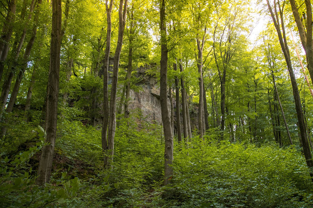 Erzweg Etappe 5 Etzelwang – Lichtenegg  Wandern Amberg-Sulzbacherland 09