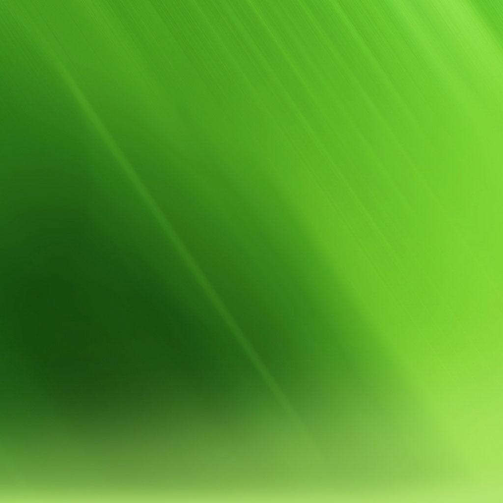 https://4.bp.blogspot.com/-2hAWWVYz8U4/T2wCaTcbzRI/AAAAAAAAC7E/2q1MXN0LZlU/s1600/simple_cool_green_wallpaper_art_ipad_hd_wallpapers_1024x1024.jpg