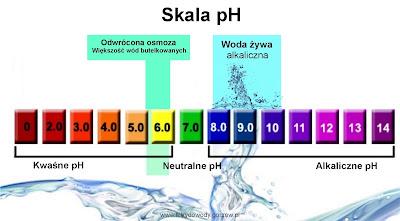 Żywa Woda