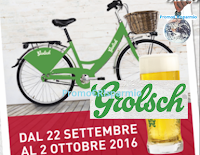 Logo Vinci 27 biciclette Grolsch da Wiener Haus