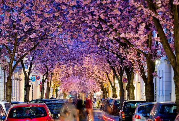 Bonn Street Germany