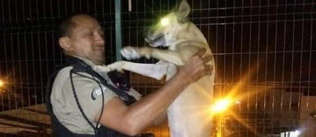 Vigilante do Atacadão, em Patos, adota cadela e foto viraliza
