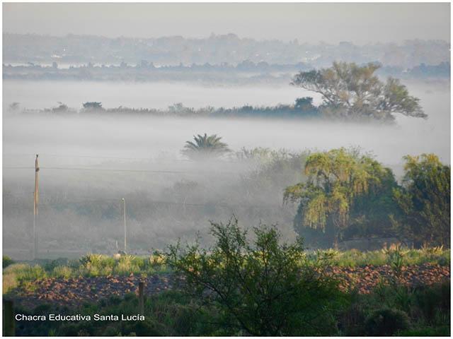 Neblina - Chacra Educativa Santa Lucía