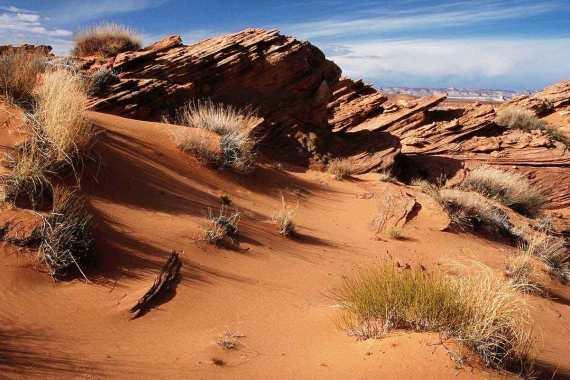 Sepertiga Bagian Bumi adalah Padang Gurun