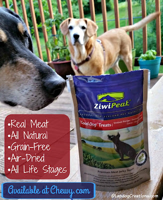 Teutul & Sophie think #ZiwiPeak Good-Dog Venison #dogtreats are delish! All Natural, Real Air-Dried Meat, Grain-Free and Suitable for All Life Stages! #ChewyInfluencer ©LapdogCreations