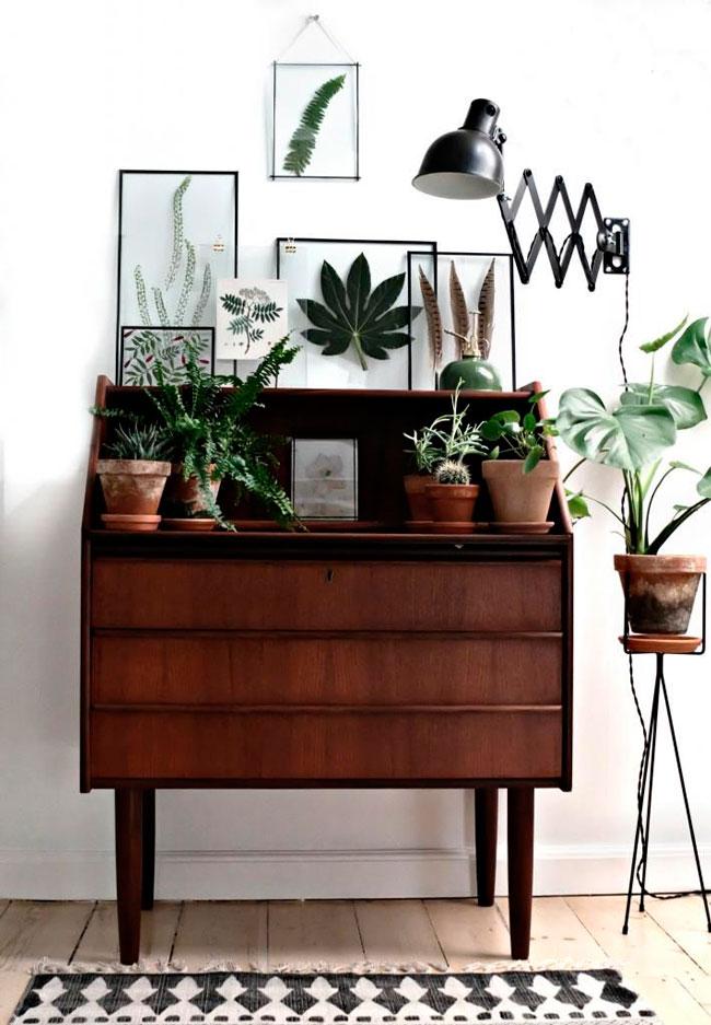 piensa en verde: plantas inspiradoras