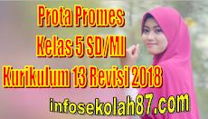 Prota Promes Kelas 5 SD/MI Kurikulum 13 Revisi 2018