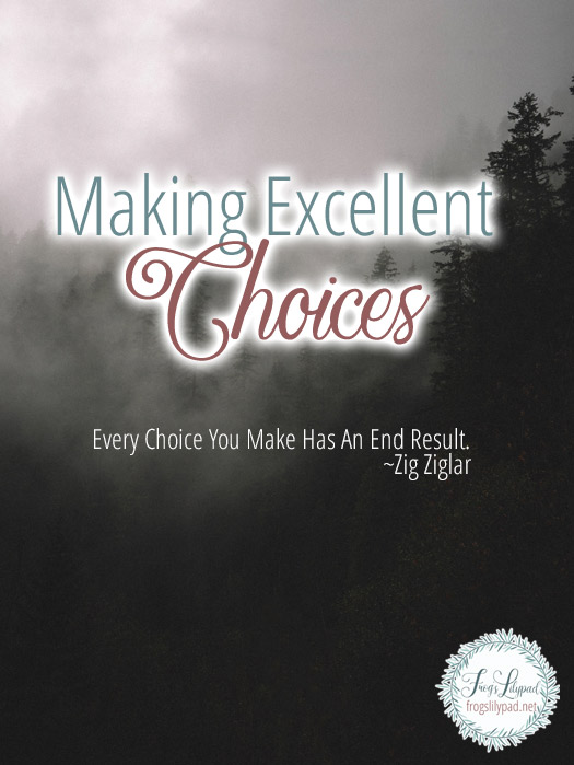 Making Excellent Choices #decisions #faith #life