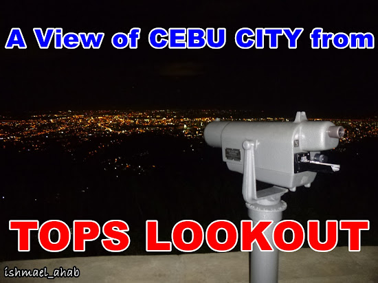 A view of Cebu City from Tops Busay