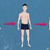 वजन कैसे बढ़ाएं - तरीके और टिप्स    मोटा कैसे बने