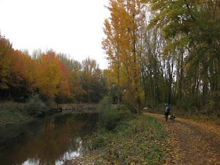 Siguiendo las aguas tranquilas