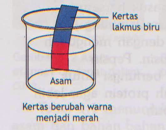 Bereaksi Dengan Logam Menghasilkan Gas Hidrogen Basa