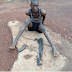 Fulani Herdsman Nabbed In Enugu With AK47 Rifle [ Name :  Ibrahim Adamumale ]