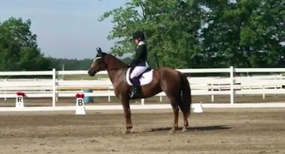 Life's A Ride Dressage Schooling Show - June 30, 2018