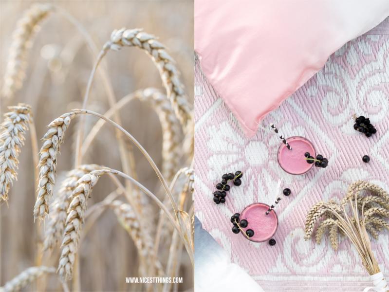 Sommer Picknick im Kornfeld mit rosa Outdoor Teppich und Johannisbeer Smoothie