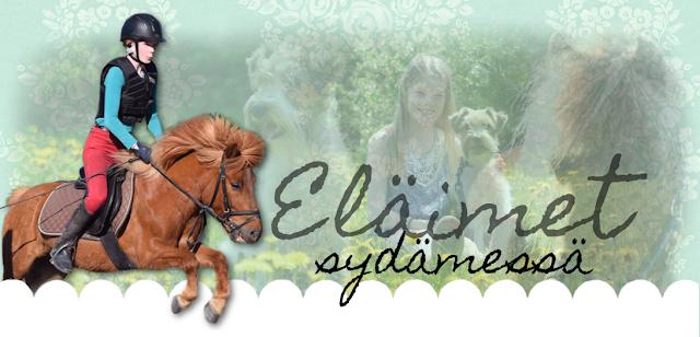 http://elaimetsydammessa.blogspot.fi/