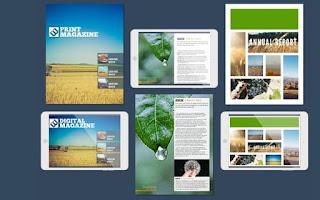 Aplikasi Online untuk Membuat Brosur: Lucidpress