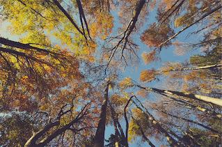صور خلفيات  مناظر طبيعية جميلة ورائعة عالية الجودة