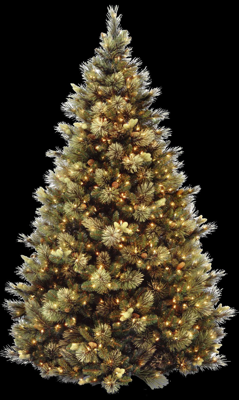 Natal Png árvore Papai Noel Bola Bota Meia Sino Vela