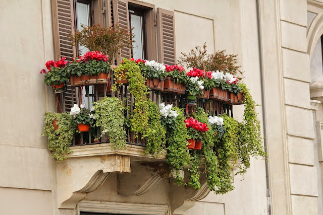 Decoriamo il balcone con un giardino... In vaso!