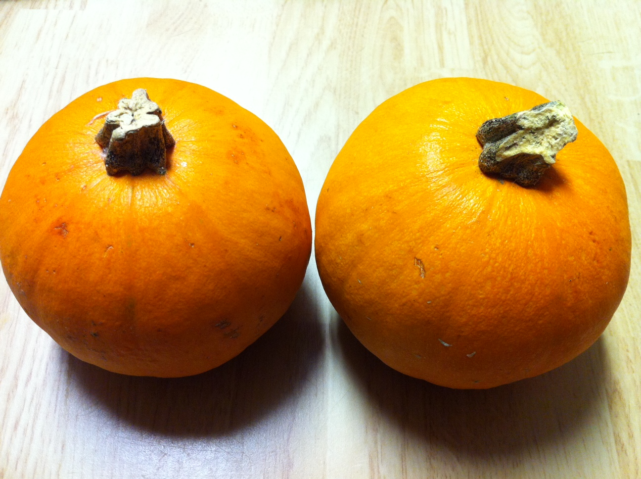 Kindergarten Kids At Play Pumpkin Exploration Amp Free