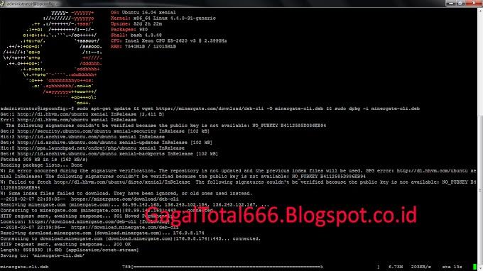 Cara Mining di MinerGate dengan menggunakan terminal/console di Ubuntu Linux Server