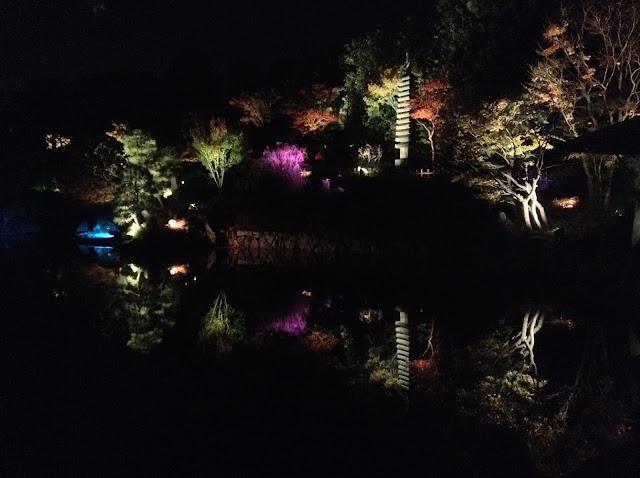 Mejiro Garden autumn lightup