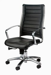 Europa Chair Review