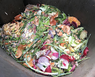 Photo of a compost bin with vegetable food scraps. https://trimazing.com/