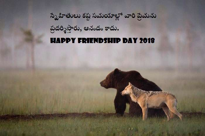 Friends Quotes In Telugu Hd Quotes About Life