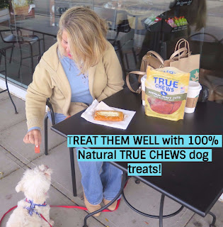 True Chews 100% Natural dog treats.  These dog treats are Made and Sourced in the USA. Premium cuts of meat, NO artificial flavors or preservatives, NO animal by-products