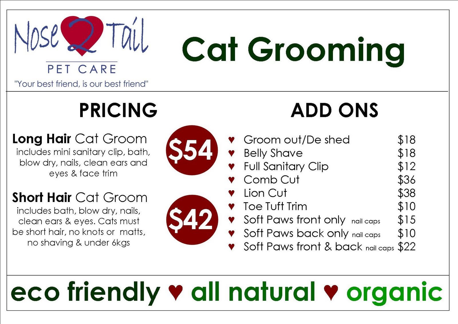 Nose 2 Tail Pet Care Latest News Cat Grooming Prices