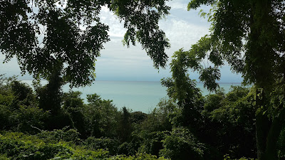 View of Lake Huron through trees
