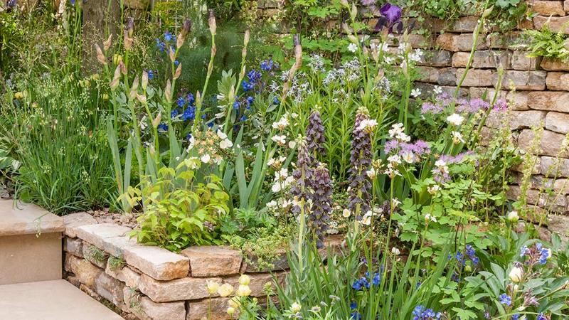 Jardin con muro de piedra seca y plantas de flor