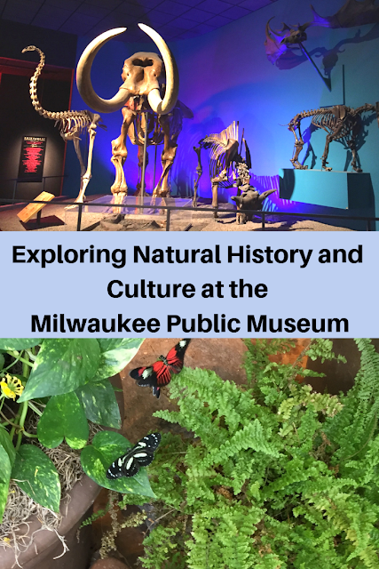 Exploring Natural History and Culture at the Milwaukee Public Museum