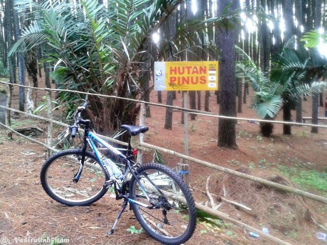 Hutan Pinus Yogyakarta dengan bersepeda