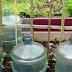 9 Genius Garden Hacks You'll Wish You Thought of Long Ago