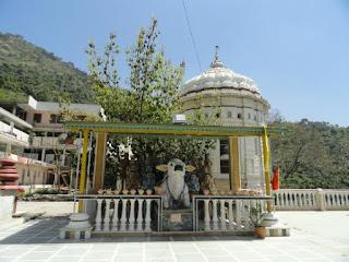 Jatoli Shiv Temple - Nandi