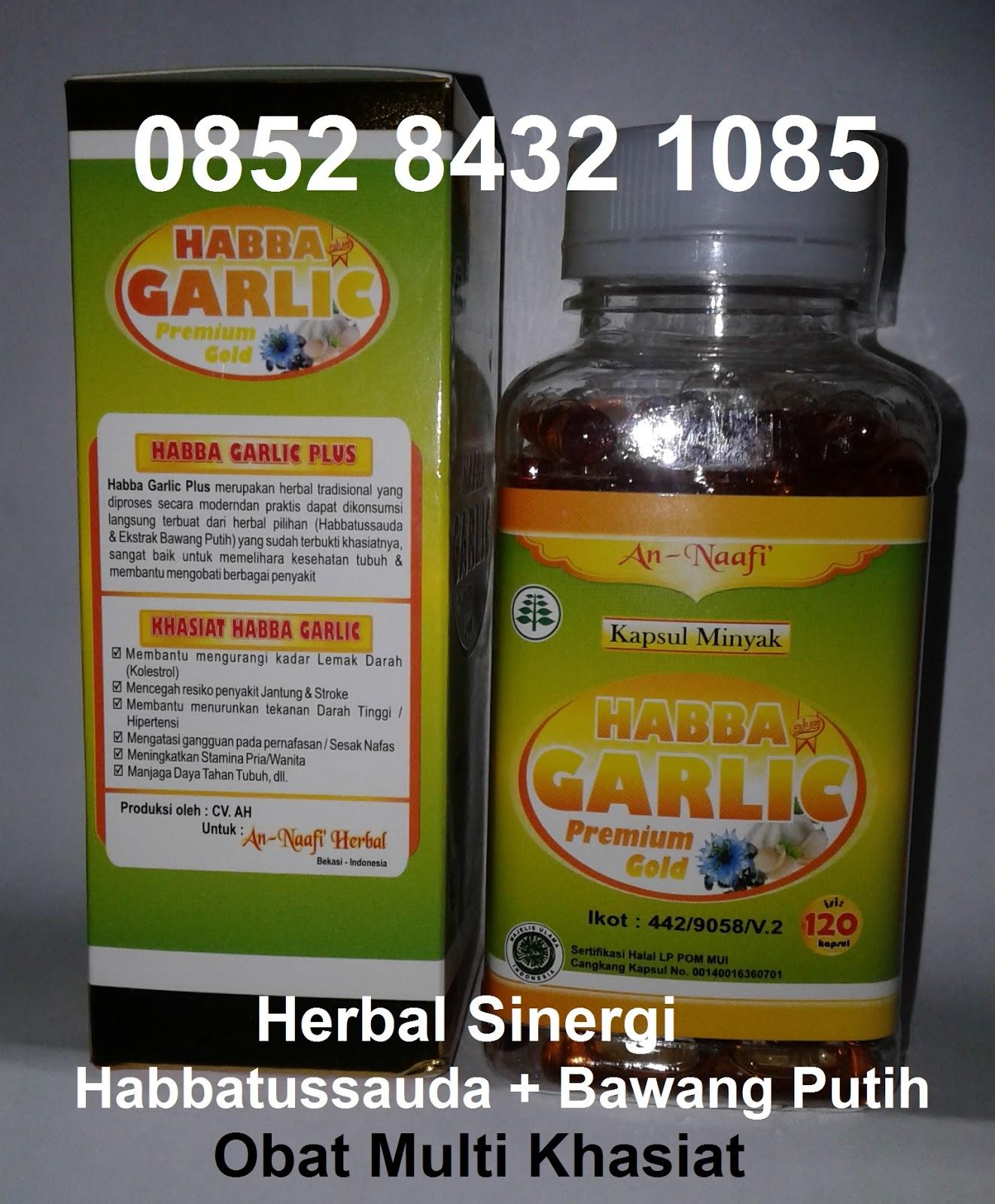 Jual Manfaat Kapsul Habbat Garlic Oil Asli Khasiat Bawang
