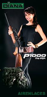 Rifles Diana, Dianawerk