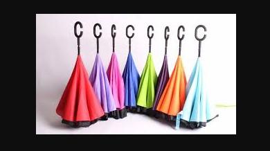 Best Umbrella Companies