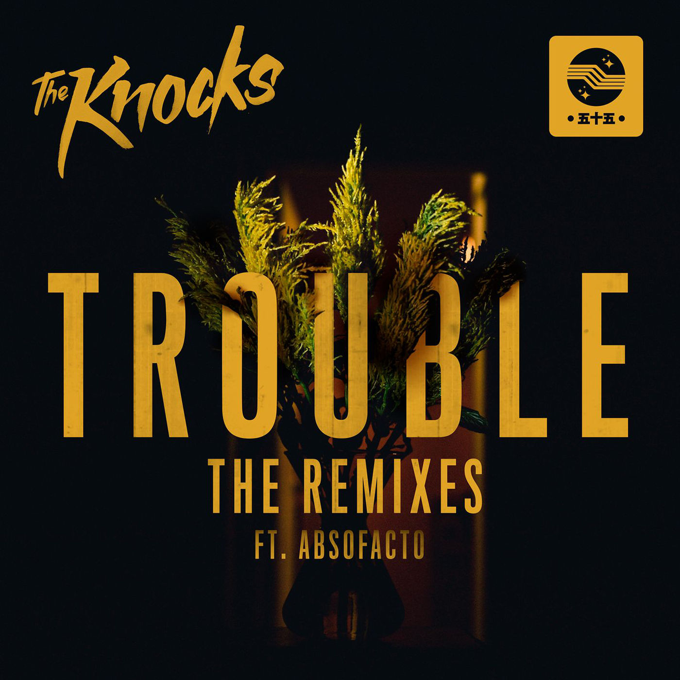 The Knocks - TROUBLE (feat. Absofacto) [Remixes] - Single Cover