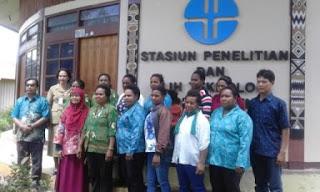 Mama Papua Mengolah Hipere Menjadi Produk Kemasan