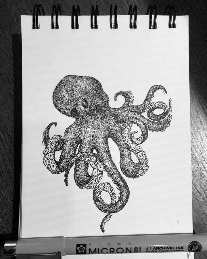 05-Octopus-4-María-Lecanda-www-designstack-co